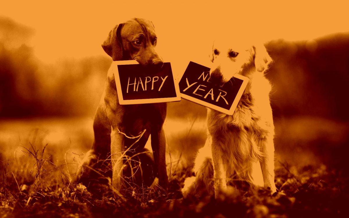 картинки и картички за нова година с кучета